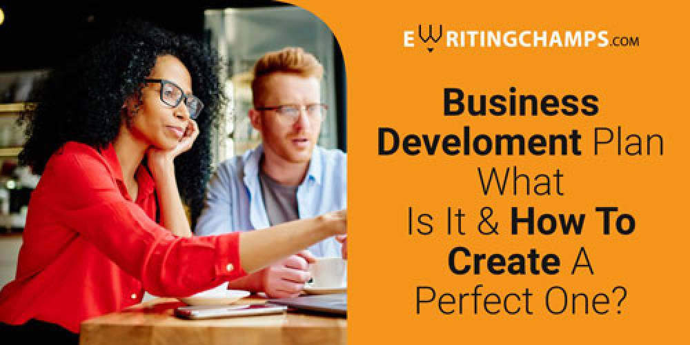 Business Development Plan : What is it and how to create a perfect one?